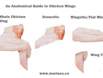 Anatomical Guide To Chicken Wings