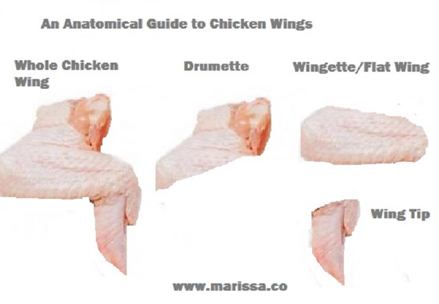 Anatomical Guide To Chicken Wings Marissas Recipes Ideas